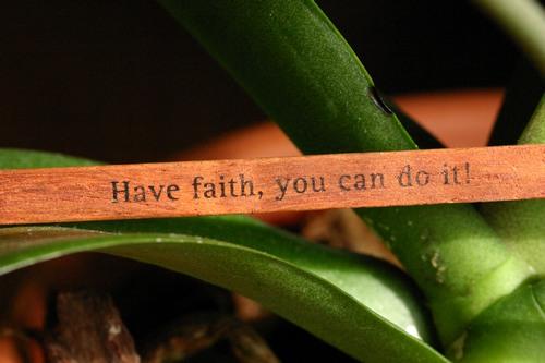 have-faith-you-can-do-it